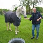 Peter met 1 vd paarden tijdens Paarden Oppas Service
