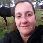 Paardenhouder referentie