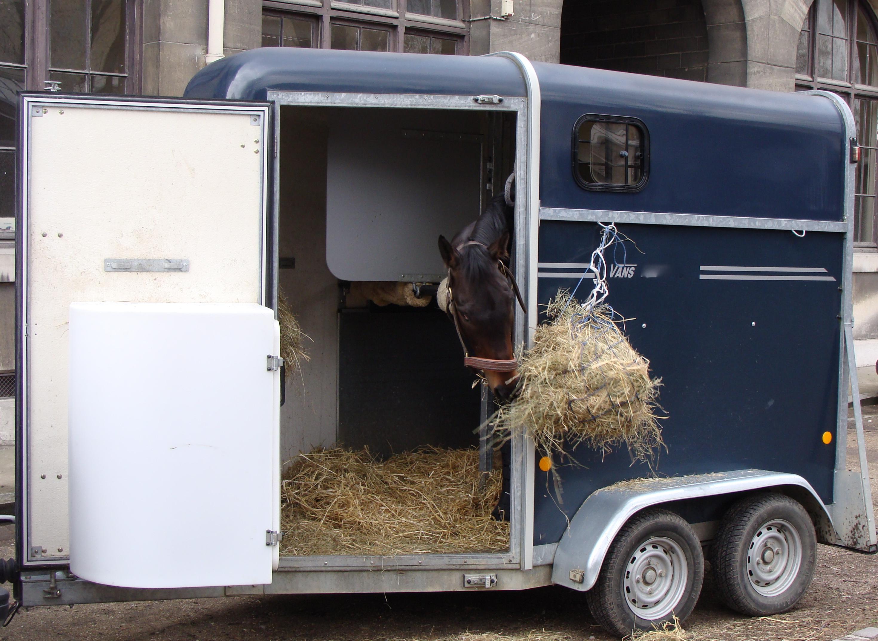 Traileronderzoek Paarden Oppas Service