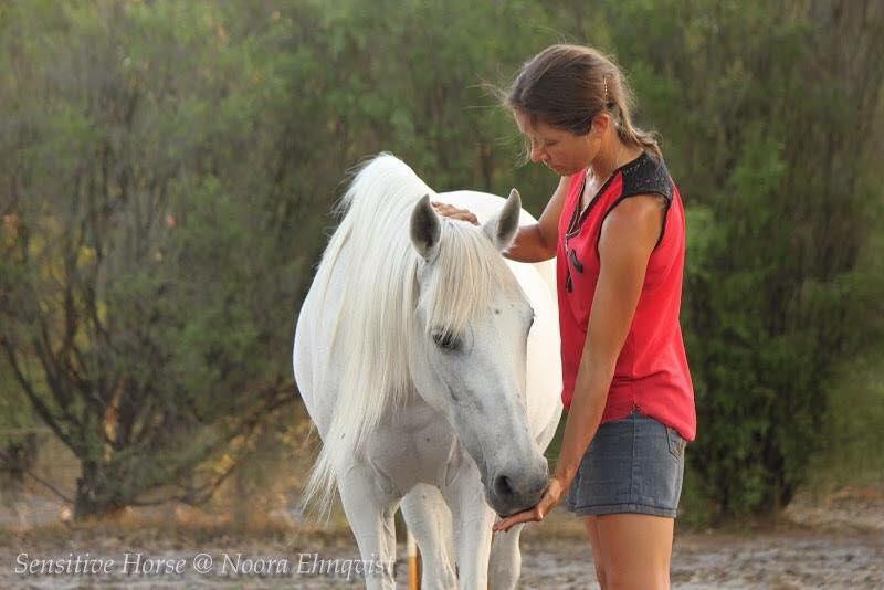 Natural Horsemanship www.PaardenOppasService.nl