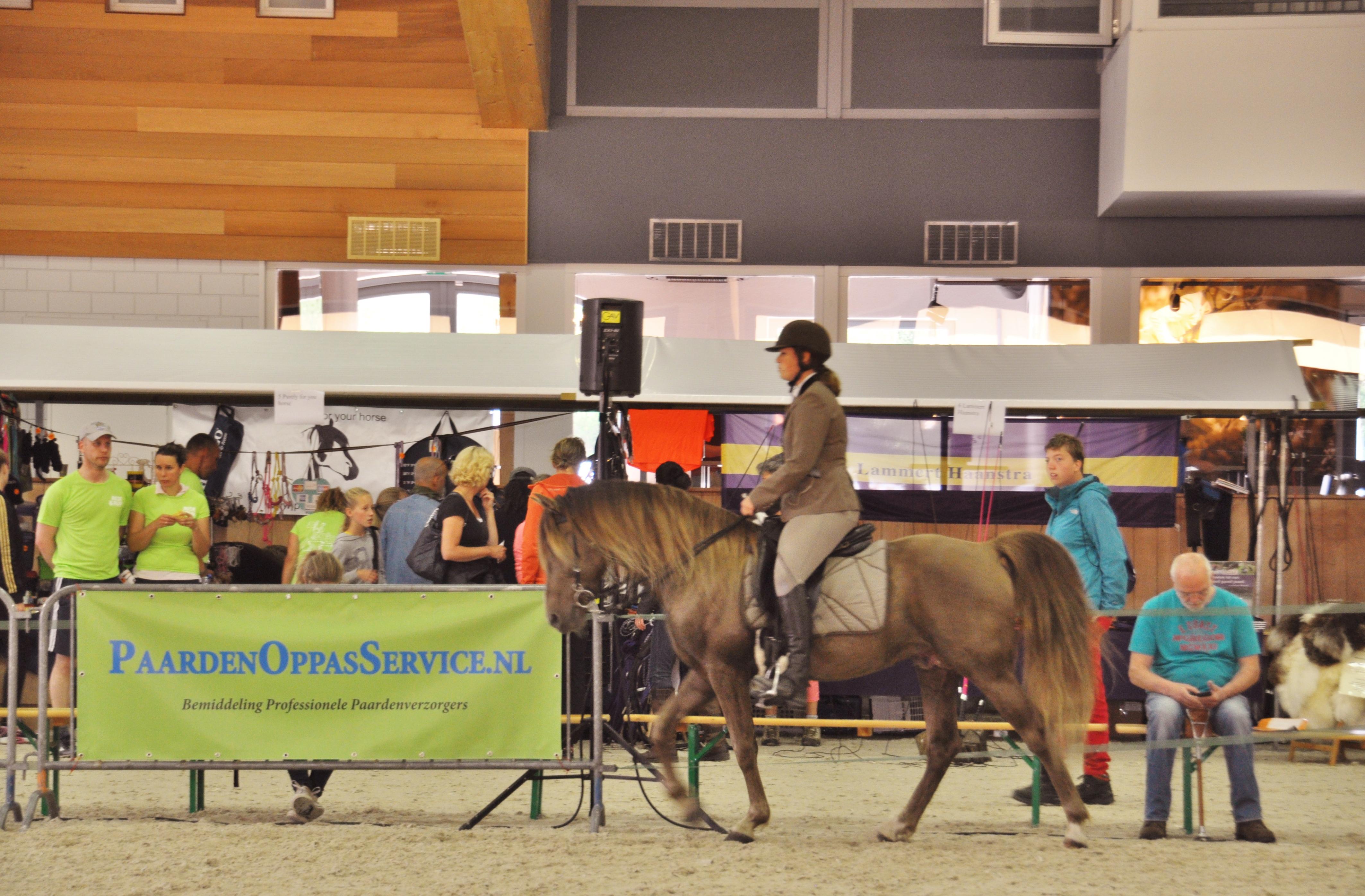 Paarden Oppas Service bij de KNHS
